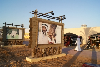 Zayed Heritage Festival 2014 - Galleries